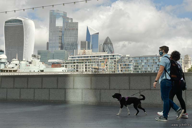 Dog walkers across the Thames from the City of London