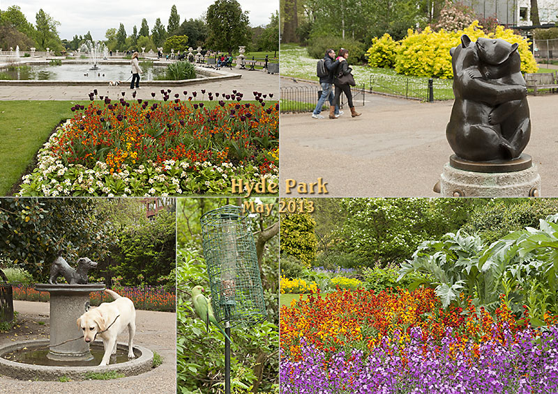 Sculpture, dogs, parakeets, artichokes and the Italian fountains in Hyde Park, London